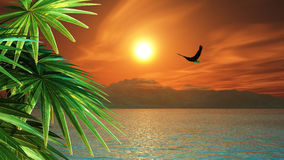3D render of eagle flying in a tropical landscape Royalty Free Stock Photos