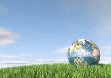 Globe in tall grass Stock Photography