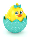 3d render of Easter funny chick in eggshell Royalty Free Stock Photography