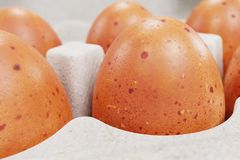 3d Render of Egg Box Stock Images