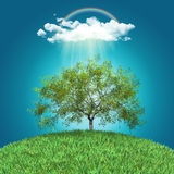 3D render of a grassy globe with a walnut tree, rainbow and rain Stock Image