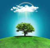 3D render of a grassy landscape with a tree, rainbow and rainclo Royalty Free Stock Photo