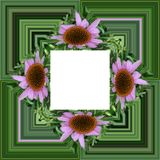 3D render flower background frame. 3D render illustration of  background frame with embossed real native colorful flowers Stock Photos