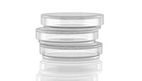 3D,render,illustration,Petri dish. On white background with reflection Stock Image