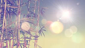 3D image of bamboo with vintage effect. 3D render of an image of bamboo with vintage effect and bokeh lights Stock Photography