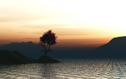 3D render of a maple tree landscape Stock Image