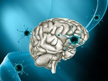 3D medical background with virus cells attacking a brain. 3D render of a medical background with virus cells attacking a brain Stock Photo
