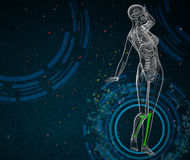 3d render medical illustration of the tibia Royalty Free Stock Images