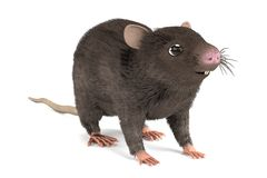 3d render of mouse Stock Images