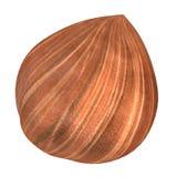3d render of nut - hazelnut Stock Photos