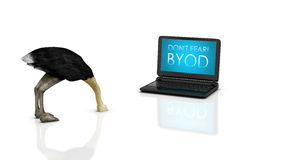 Dont fear BYOD. 3d render of an ostrich with head buried in the ground and a notebook/laptop branded Dont fear BYOD, isolated on a white background stock illustration