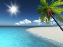3D render of a palm tree on a sandy beach Royalty Free Stock Image