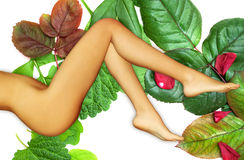 3d render photorealistic image of woman legs Stock Images