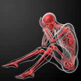 3d render red skeleton Stock Photo