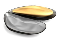 3d render of shell Stock Photos