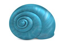 3d render of shell Royalty Free Stock Photography
