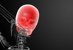 3d render skull X-rays Royalty Free Stock Photography