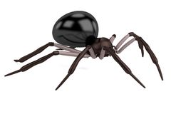3d render of spider Stock Photos
