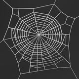3d render of spiderweb Royalty Free Stock Photos