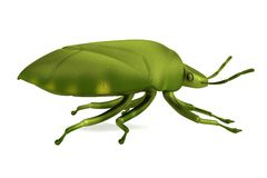 3d render of stink bug Royalty Free Stock Photography