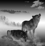 3D render of Timber Wolfs. Royalty Free Stock Photo