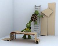 Tortoises decorating a room Royalty Free Stock Photo