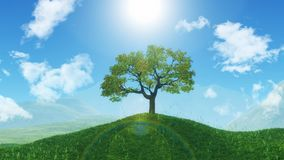 3D tree on a grassy hill Stock Photography
