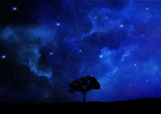 3D render of a tree silhouetted against a night sky. 3D render of a tree landscape silhouetted against a night sky Royalty Free Stock Photography