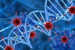3D virus cells attacking a DNA strand. 3D render of virus cells attacking a DNA strand Stock Photos