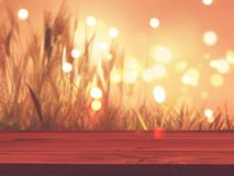 3D wooden table with defocussed autumn wheat in the background Royalty Free Stock Photo