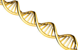 3d rendered, DNA gold with copy space, isolated on white background Stock Photos