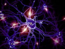 Nerve cell Royalty Free Stock Photos