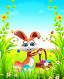 Brown bunny with big eggs basket in garden Stock Image