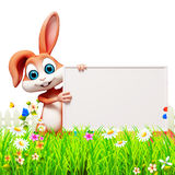Brown easter bunny with big sign Royalty Free Stock Images