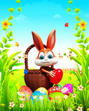 Brown Easter bunny pick up the eggs in garden Stock Image