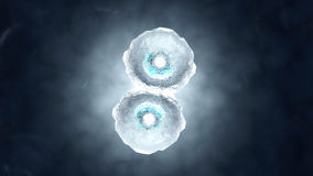 3D rendered illustration of Cell Replication Royalty Free Stock Photos