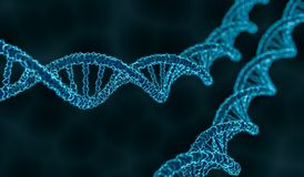 3D rendered illustration of double helix DNA molecule Royalty Free Stock Photos