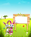 Easter bunny with sign and eggs on grass Stock Images
