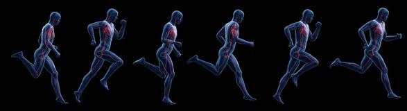 A running mans heart vector illustration