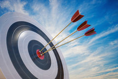 3D rendered illustration of target with arrows.  Royalty Free Stock Images