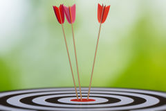 3D rendered illustration of target with arrows Stock Photo