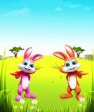 Two easter bunny with carrot on green grass. 3d rendered illustration of  two easter bunny with carrot on green grass Stock Photography