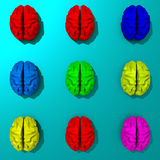 3d rendered low poly brains set illustration. Stylized set of low poly brains illustration, pop art style Royalty Free Stock Images