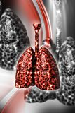 3d rendered Lung Cancer - Unhealthy lungs isolated on a color background royalty free illustration