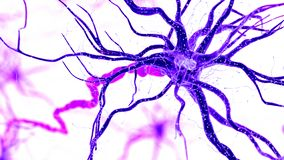 A human nerve cell royalty free illustration
