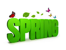 3D Rendered Spring Word  in White Background Royalty Free Stock Image