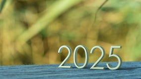 2025 3d rendering ilustracji