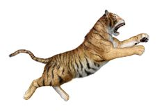 3D rendering big cat tiger on white. 3D rendering of a big cat tiger isolated on white background Royalty Free Stock Photo