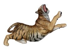 3D Rendering Big Cat Tiger on White. 3D rendering of a big cat tiger isolated on white background Stock Photo