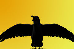 3D rendering of a black raven. On yellow background Royalty Free Stock Photography